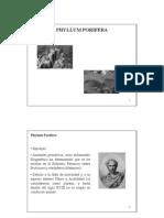 phylum porifera.pdf
