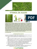 ETANOL de ALGAS. La Wahie Biotech - Minuta Para Um Artigo.novo.19.05.09
