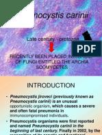 Pneumocystis Cariinii 1