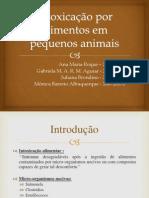 Intoxicação por alimentos em pequenos animais - apresentação