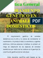 Mejoramiento Animal