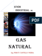 Combustion Industrial de Gas Natural