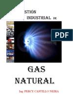 Combustion Industrial de Gas Natural