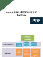 Biochemical Identification of Bacteria