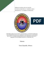 IDENTIFICACIÓN, EVALUACION Y ESTUDIO DE LA ACTIVIDAD DIARIA DE AVES  PRESENTES EN PLAYAS ARENOSAS Y ROCOSAS EN LA LOCALIDAD DE CATAS Y LA BAHIA DE BALLENITAS, DE LA PROVINCIA DE ISLAY – AREQUIPA.docx