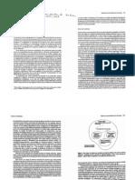 Tipología de Sistemas