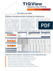 TIQView - Interaktives Data Profiling für Jedermann