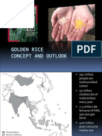 Golden Rice FINAL – potential and outlook