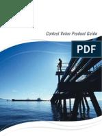flowserve CV.pdf