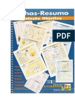 Fichas Resumo Objetivo