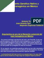 Hipotesis de La Coexistencia Entre Las Razas Antonio Turrent
