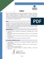 Curriculum, Experiencia MA&C Capacita Limitada