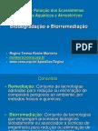 Apresentação Biodegradação