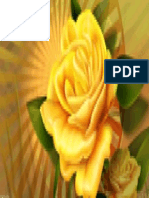 yellow_rose_3_1920x1080