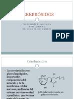 CEREBRÓSIDOS.pptx