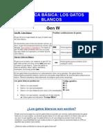 Genetica basica Los gatos BLANCOS