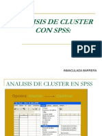 Clusters Pss 1