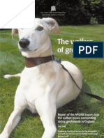 Report of APGAW Inquiry Into the Welfare of Greyhounds