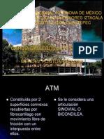 Anatomía y Fisiología de la ATM