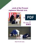 Shin tai ryu sho sho ryu web jujutsu karate fandeluxe Images