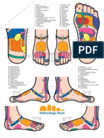 Reflexology Foot Chart -Ok