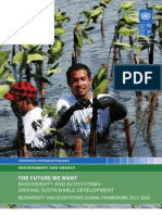 UNDP Biodiversity and Ecosystems Global Framework 2012 2020