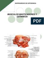 presentacin-musculos-1231428019279396-1