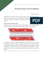 Farmacocinética I_ Mecanismos de Paso a través de Membranas