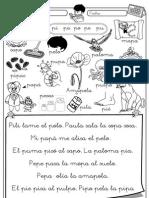 Lectura-P