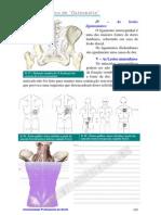 osteopatia_parte3