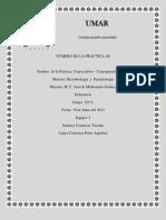 practica 8.docx
