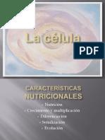 1ertemadeloscambioscelulares-110426005833-phpapp02