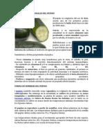 Beneficios Nutricionales Del Pepino