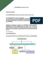 Importancia de La Bioquimica en La Ipq y La Ipa