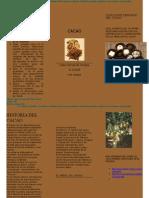 practica de la pagina 74