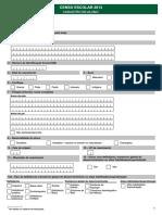 Formulario Censo Escolar Aluno 2013