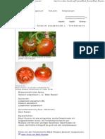 Black Russian - Solanum Lycopersicum L