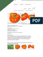 Caro Rich - Solanum Lycopersicum L