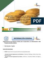 Producción y uso de semilla de calidad de papa en agricultura familiar campesina