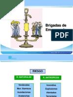 1-estructura-brigadas-1232215614176281-1-110216191822-phpapp02