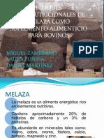 BMN BLOQUES MULTINUTRICIONALES (1)