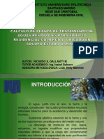 Diapositivas_tesis Ricardo Gallanty