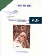 Maria Santisima de La Salud - Navarro Mollor