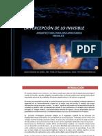 La Percepcion de Lo Invisible Arquitectura Para La Discapacidad Visual