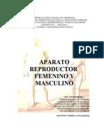 Aparatos Reproductores Femenino y Masculino