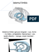 Sistemul Limbic Si Diencefalul