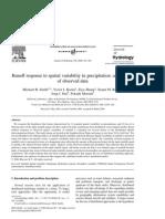 DMIP Spatial Rain Variability