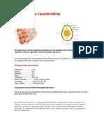 El Huevo y sus Características