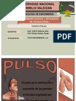 Pulso y Frecuencia Respiratoria