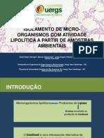 ISOLAMENTO DE MICRO-ORGANISMOS COM ATIVIDADE LIPOLÍTICA